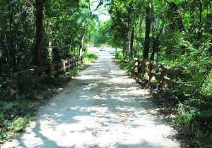 Piney Woods Scenic Motorcycle Rides